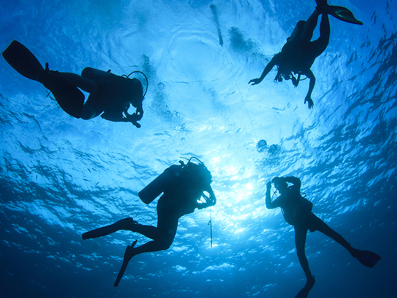 scubadiving1