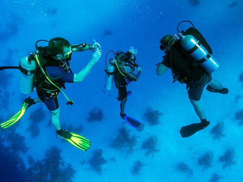 scubadiving2