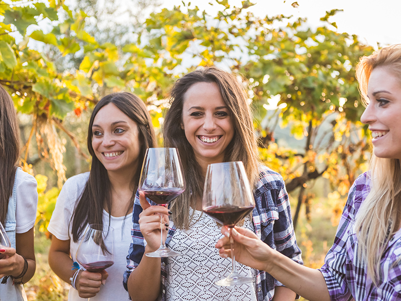winetour4